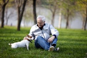 Dog owner and his dog in a park